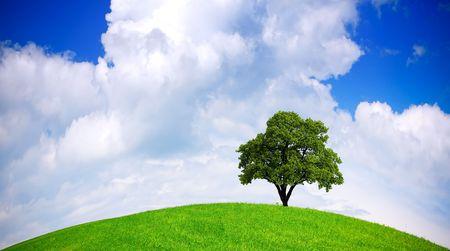 Global ecology Stock Photo - 6717508