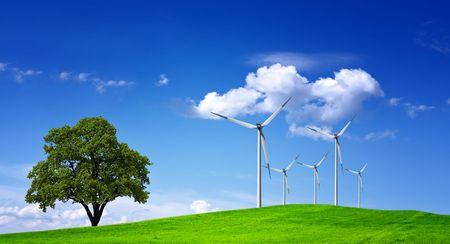 Wind Field Stock Photo - 6960930