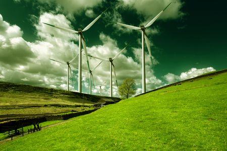 Ecology Stock Photo - 7152870