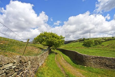 dales: Yorkshire Dales Stock Photo