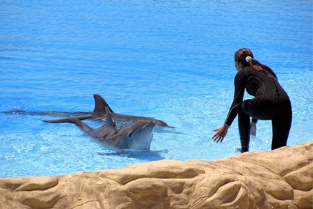 Woman and dolphin photo
