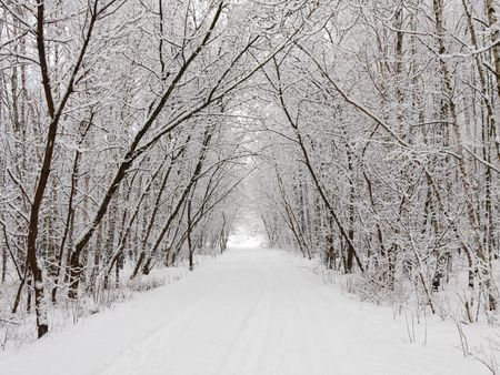 Winter alley Stock Photo - 7743652