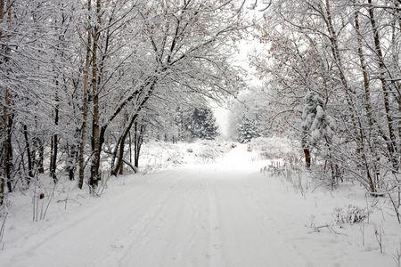 Winter Stock Photo - 7743649