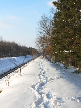 Winter river Stock Photo - 7743706