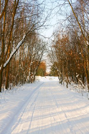 Winter park Stock Photo - 7743725