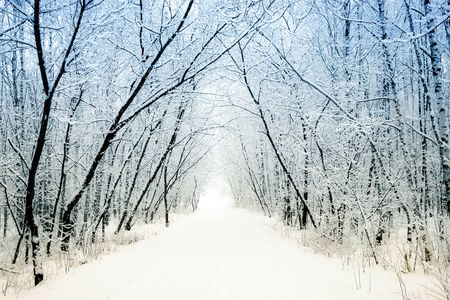 Winter alley Stock Photo - 7840835
