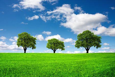 Green landscape Stock Photo - 7929644