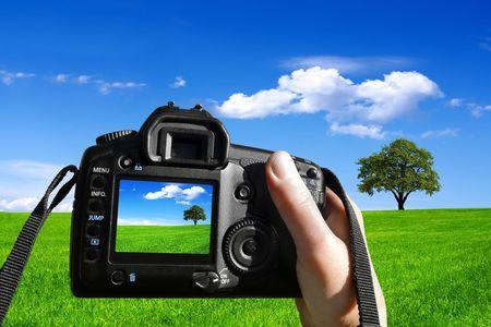 Photo nature photo