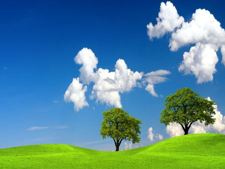 Green tree in nature Stock Photo - 8006527