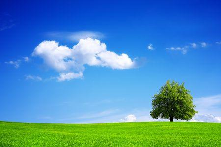 Green planet - Earth photo