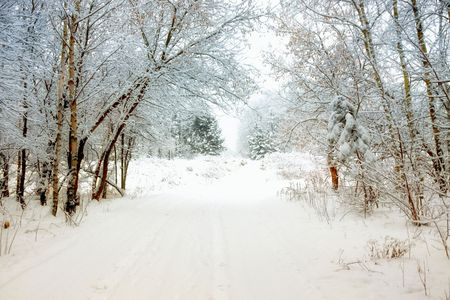 Winter alley Stock Photo - 8195423