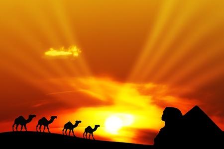 Paisaje de desierto con camellos y pirámide