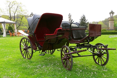 Antique carriage in the park photo
