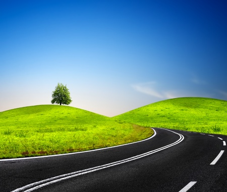 sinuous: Sunny road