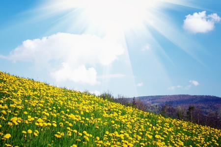 sun rise: Spring in the mountain Stock Photo