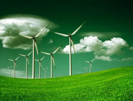 energ�as renovables: Ecolog�a