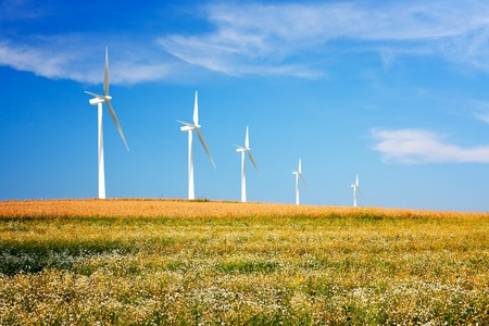 Wind turbines on spring meadow photo
