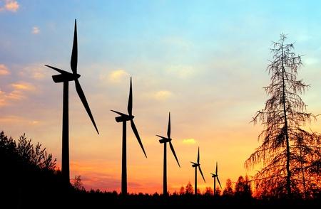 Wind turbine farm at sunset photo