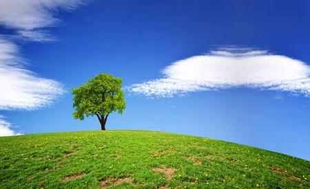 over the hill: Planeta verde Foto de archivo