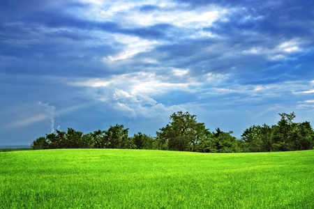 Green field and trees  Stock Photo - 9062212
