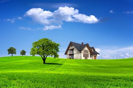 Life & Environment