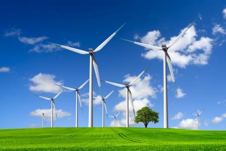 Wind turbines farm op groene weide