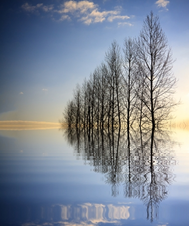 reflection in mirror: Forces of nature Stock Photo