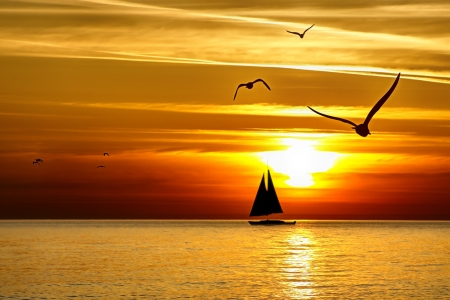 voile bateau: Coucher de soleil de mer