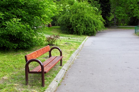 A Bench in the Park photo