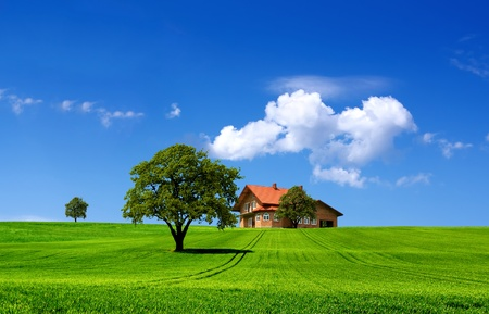 Green nature landscape photo