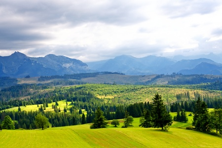 Green valley in the high mountains photo