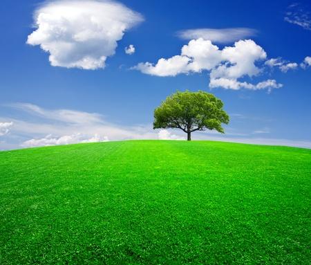 l natural: Earth