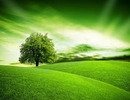 green planet: Eco plan�te verte Banque d'images