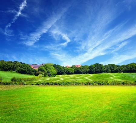 horizonte: Campo verde y cielo nublado