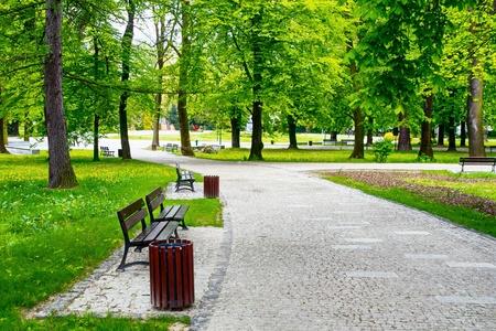 banc de parc: Vert parc de la ville