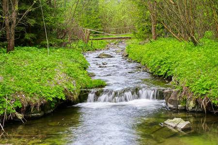 cascade range: Mountain river Stock Photo