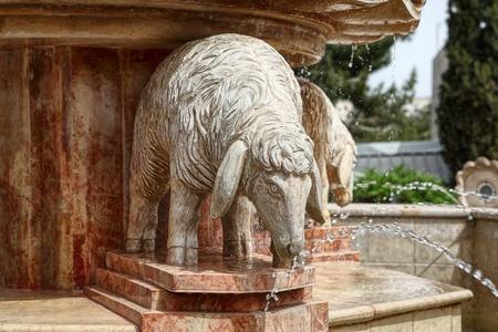 Fountain of sheep photo
