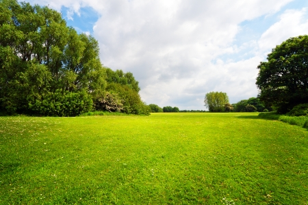 Grün, Natur, Landschaft