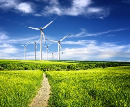 electricidad industrial: Protecci�n de la naturaleza Foto de archivo