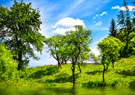 nature landscape: Green nature landscape