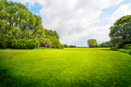 Green outdoor for relaxation