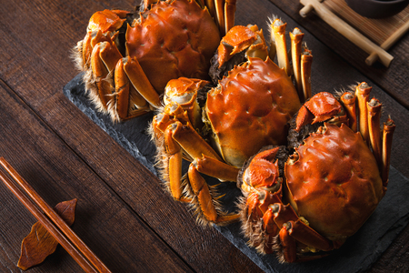Fat and beautiful crabs 스톡 콘텐츠