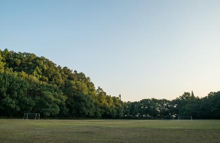 Great Lawn landscape view
