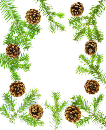 Christmas frame. Pine cones, fir branches on white background. New Year concept.