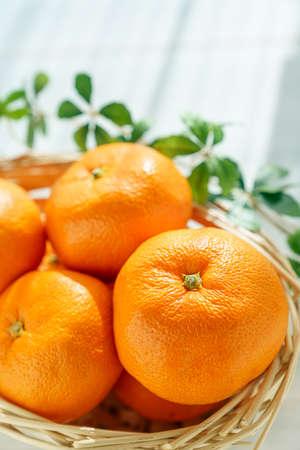 Fresh mandarin orange isolated on wooden table