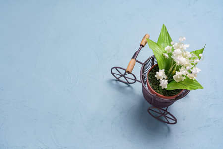 Bicycle accessories and artificial flowers