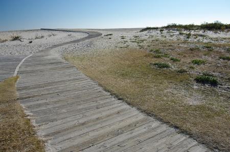 Beach Boardwalk: A wooden path invites visitors to the beach at Assateague Island National Seashore. photo
