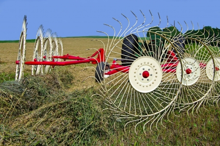 furrows: Raking Hay:  Wheels made of heavy wire spokes, pulled by a tractor, gather furrows of cut hay in preparation for baling.