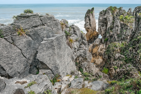geophysical: New Zealand Coastal Rocks   Patterns of sedimentation and erosion show in finely detailed �pancake� rock formations on the west coast of New Zealand�s South Island