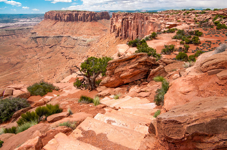 foot path: Canyon Rim Hiking Trail   A foot path leads down a rock stairway and along a canyon rim in Canyonlands National Park  Stock Photo